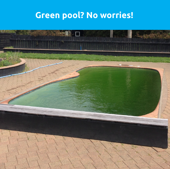 a green swimming pool - Swimmingly Pools